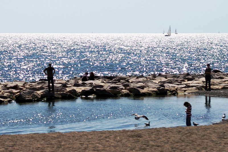 Beaches Pond    (click for previous picture)