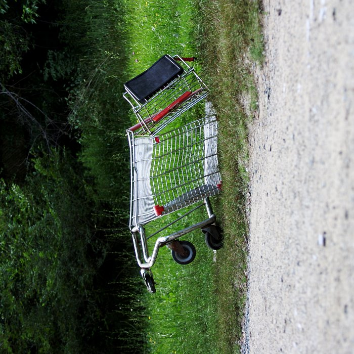 Flat. Shopping Cart.    (click for previous picture)