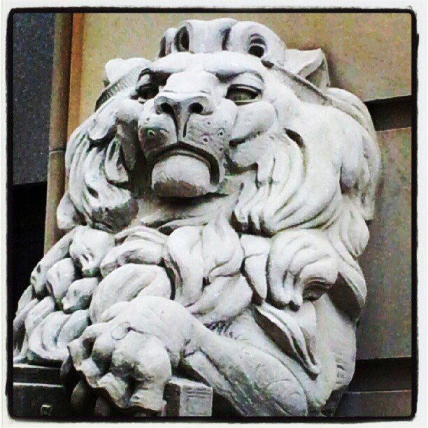 Ottawa Postal Lions    (click for previous picture)