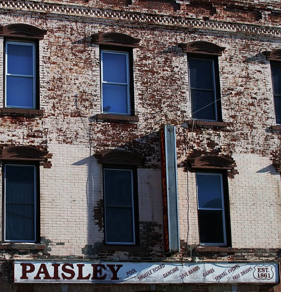Paisley    (click for previous picture)
