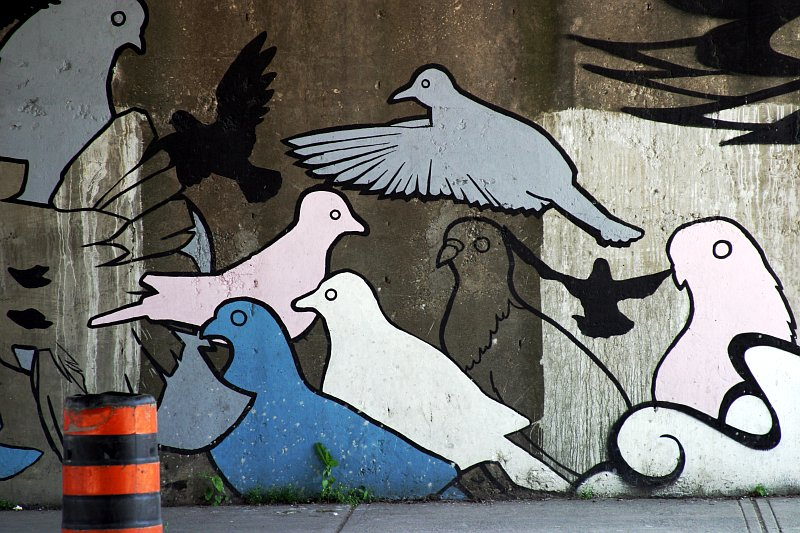 Pigeon Mural 2    (click for previous picture)