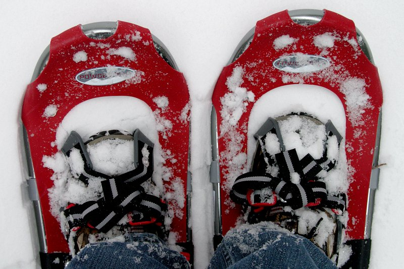 Snow shoes    (click for previous picture)