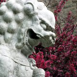 A Chinese Lion outside the ROM